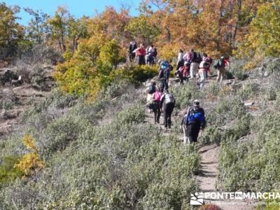 Excursionismo y senderismo, Parque Natural del Hayedo de Tejera Negra; actividades para hacer en mad
